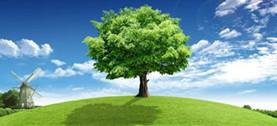 ecology2_副本.jpg